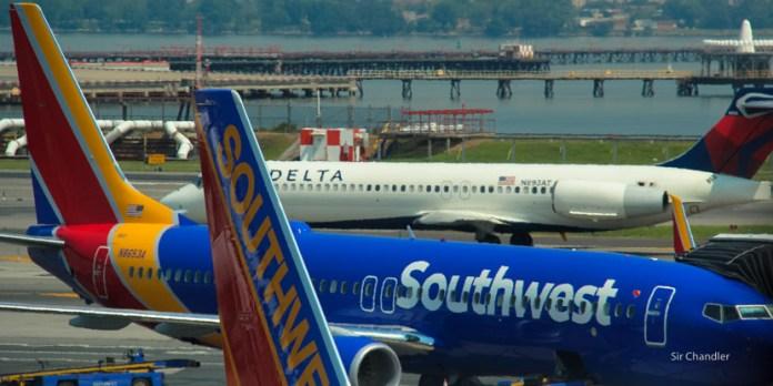 Aeropuertos de Estados Unidos y la estrategia de la gatita Flora