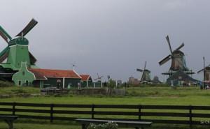 d-molinos-amsterdam-1538
