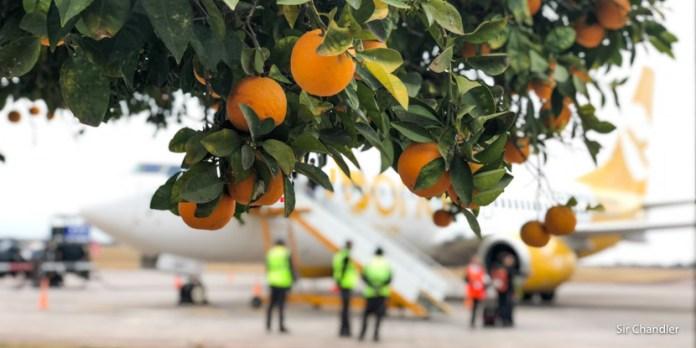 Vuelo de Flybondi de Santiago del Estero a El Palomar – crónica