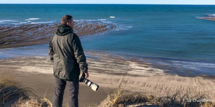 Observando ballenas desde la playa en Puerto Madryn