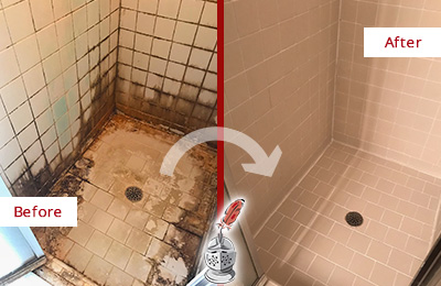 tile and grout cleaners cape coral fl