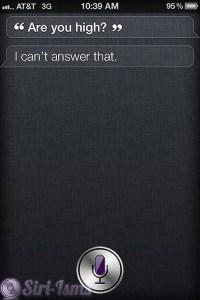 Are You High? ~ Funny Siri Sayings