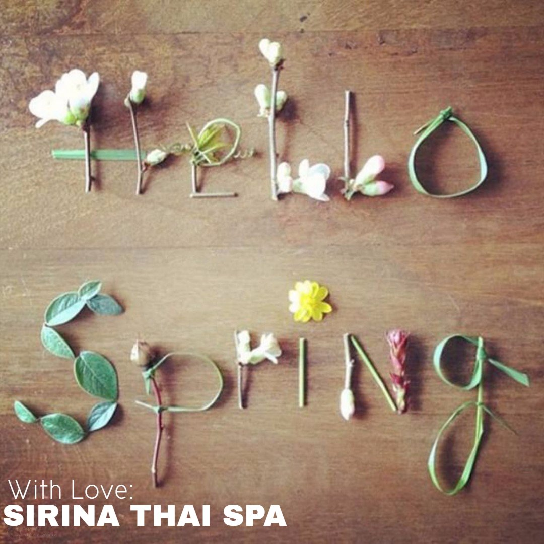 Happy Spring Day!