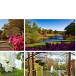 Landscape Website Mock-up