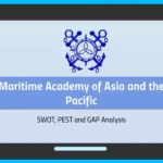 IS 272 AIMS SWOT PEST and GAP Analysis