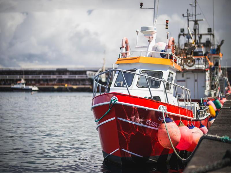 fishing vessel barche da pesca satellitare iridium Fleetone sat