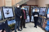 Dani ruske kulture ove godine onlajn