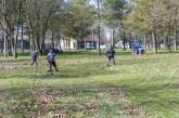Počela akcija košenja travnatih površina