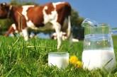 Povećanje premije za mleko za 40 odsto, ko ima tri krave ispunjava uslove