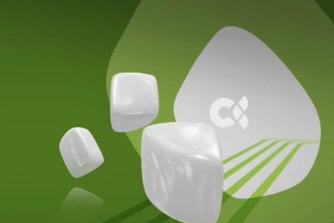 Branding Televisión Canaria