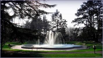 fontana del parco