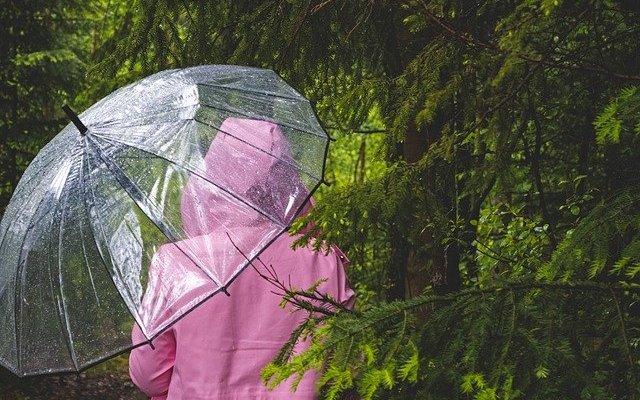 umbrella 4234837 640