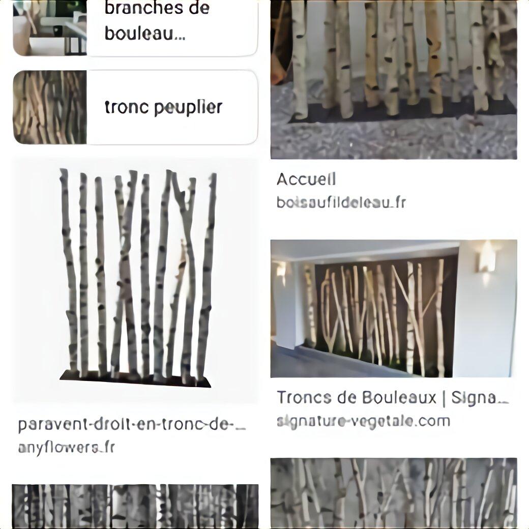 Tronc Bouleau D Occasion Plus Que 3 A 75
