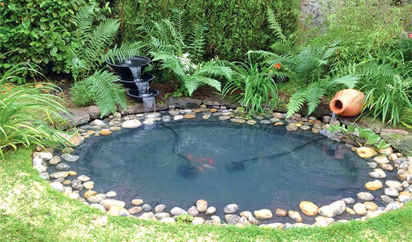 bevetes jeloles fuggo pompe pour bassin de 1000 litres amazon