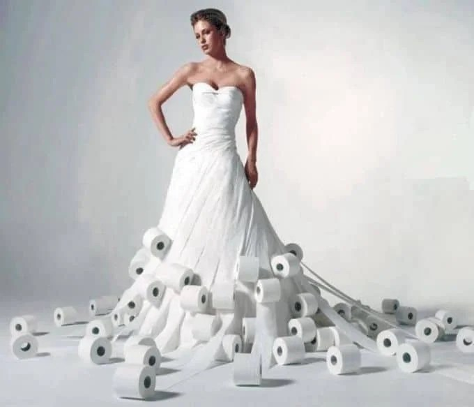 Charmin Toilet Paper Wedding Dresses Site Equip