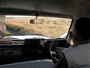 保護区内の草原をランクルで自由自在に動きまわるドライバー兼ガイド。担当してくれた彼はムパタ・サファリ・クラブのベテラン、オボチャ。無線で他車と連絡をとりながら動物を見つけ出す。
