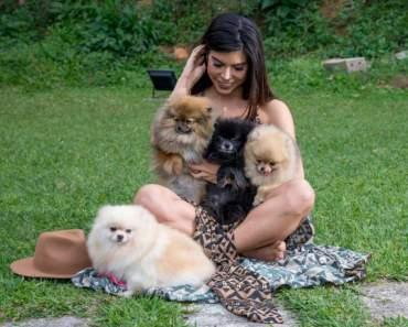 Priscila Rocha abre o coração para os animais e projeta ONG