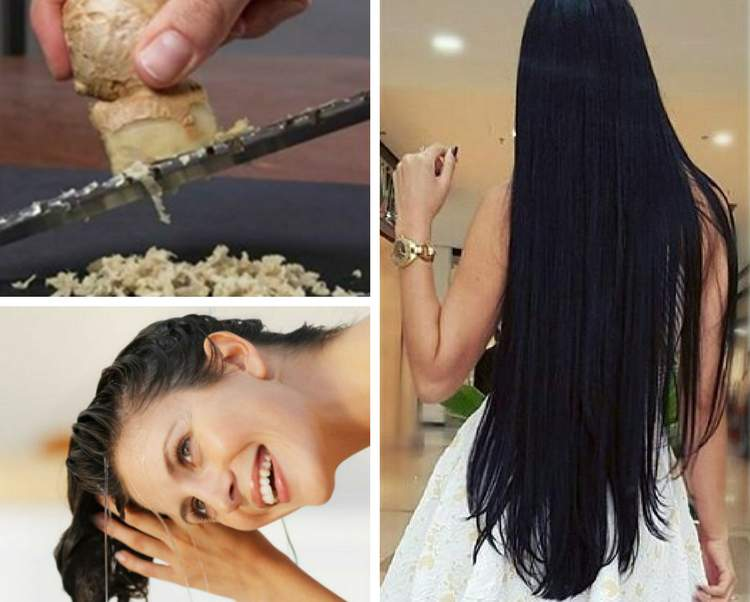 Receita caseira de gengibre para acelerar o crescimento dos cabelos