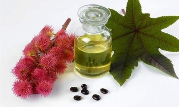 Receita com óleo de rícino para aumentar o volume e brilho dos cabelos