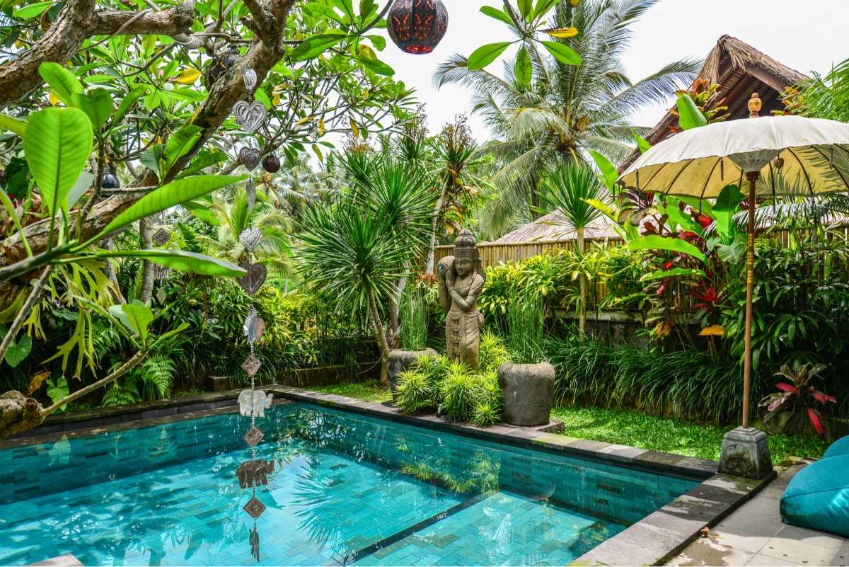 piscina quadrada em meio a vegetação