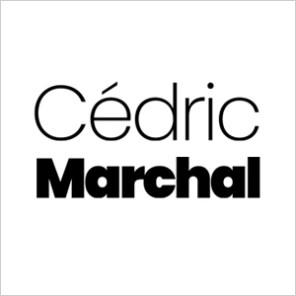 Cédric Marchal - Comédien, chanteur, metteur en scène - Lyon