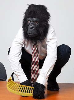 Amazing reviews while dressed as a gorilla