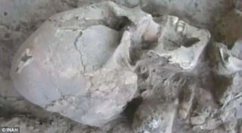 Hallan en Sonora cráneo de un allien - Fotos y video