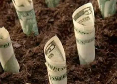 Ideas para hacer crecer tus ahorros