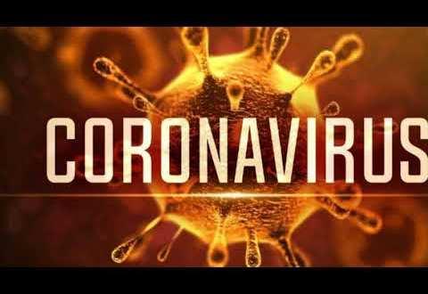 Coronavirus > La OMS aconseja prepararse para una pandemia