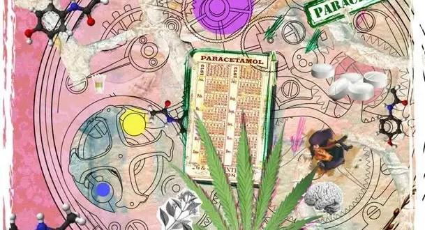 El paracetamol y el cannabis son más parecidos de lo que tú crees