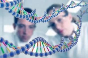 EEUU debate el patentamiento del ADN
