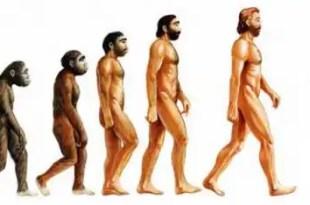Conoce los secretos de la dieta paleolítica