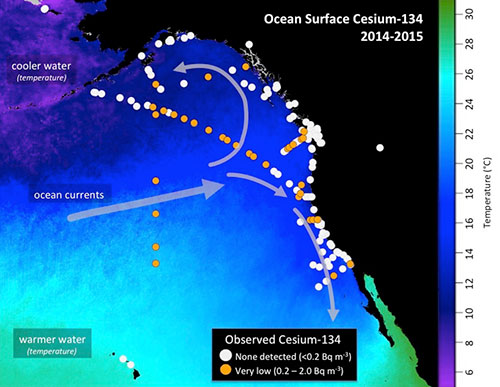 jpg Higher Levels of Fukushima Cesium Detected Offshore
