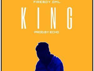 Fireboy DML – King Instrumental