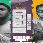Malvis – Need Some Love ft Magnito