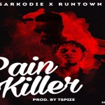 Sarkodie Pain Killer ft Runtown