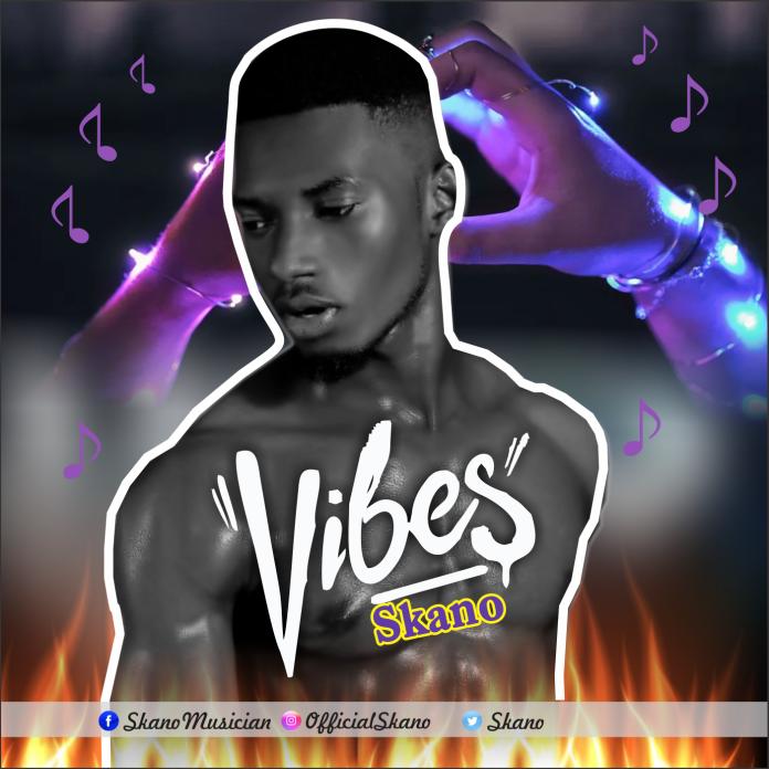 Skano Vibes mp3 image