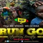 Stonebwoy Run Go