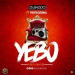 DJ Baddo ft. Professional – Yebo