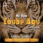 Mr Raw Ebube Agu Mp3 Download