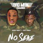 Dope Teezy Ft. Seyi Vibez No Seke mp3 download