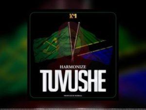 Harmonize Tuvushe mp3 download