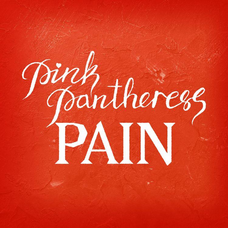 PinkPantheress Pain mp3 download