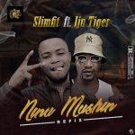 Slimfit Ft. Iju Tiger Ninu Mushin Refix mp3 download