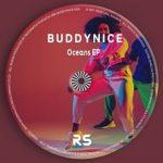 Buddynice Idlozi Lam mp3 download