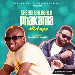 DJ Gambit Sheydi Balabala Phakama 2021 Mix Mp3 Download