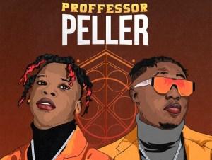 Seyi Vibez Professor Peller ft Zlatan mp3 download