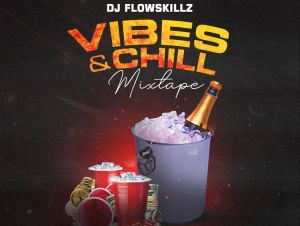 DJ FlowSkillz Vibes And Chill Vol. 2 mp3 download