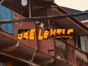 BackRoad Gee – See Level ft. Olamide (Lyrics)