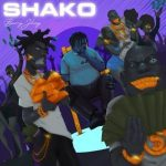 Barry Jhay Shako mp3 download